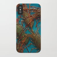 lobster iPhone & iPod Cases featuring Lobster by comma black