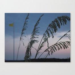 Swim Canvas Print