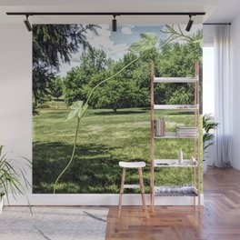 The Traveling Morning Glory Vine Wall Mural