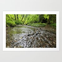 Spawning Grounds Art Print