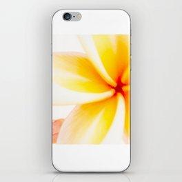 Dreamy Fangipani iPhone Skin