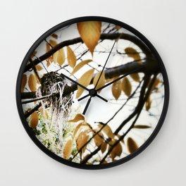 Streamer nest Wall Clock