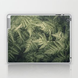 SHADED GREEN FERN Laptop & iPad Skin