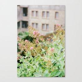 Flowers on Film Canvas Print
