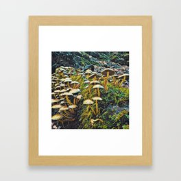 Who Said Mushroom Framed Art Print