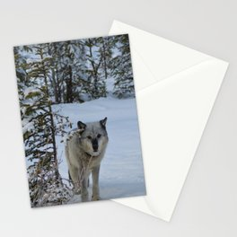 Lone wolf in the snow Stationery Cards