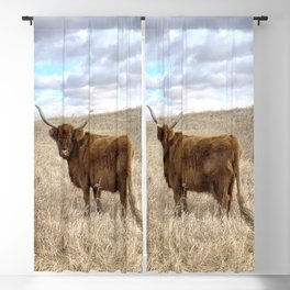 Highland Cow in Starland County, Alberta Blackout Curtain