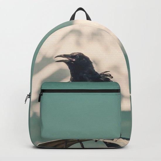 Mt. Jefferson Raven Backpack