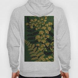 Antique Ferns Hoody