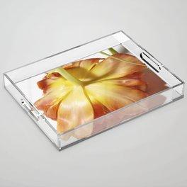 Face down bloom Acrylic Tray