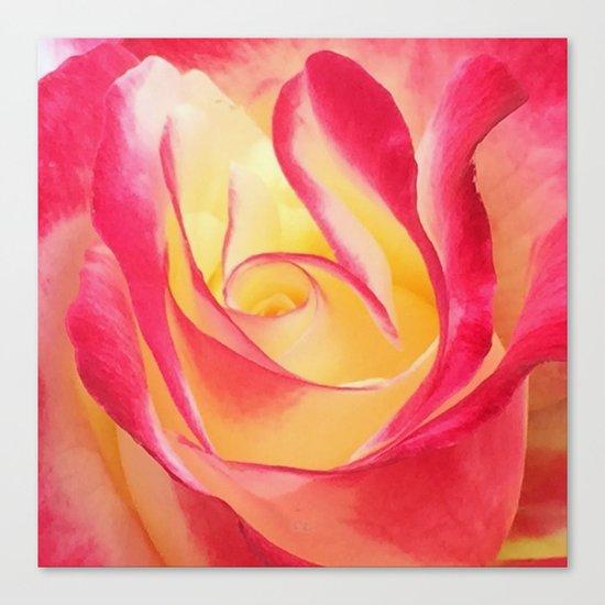Summer Rose Untouched Canvas Print