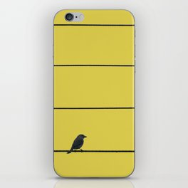 Bird and wires iPhone Skin