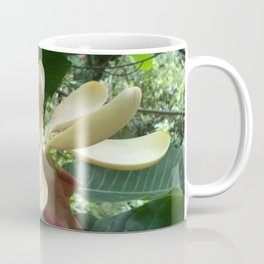 Botanical Garden Europe White Magnolia Coffee Mug