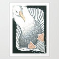 Toroa Art Print