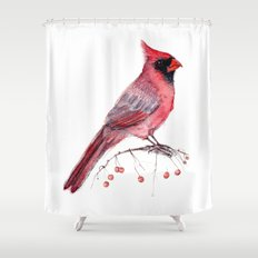 Red Cradinal Shower Curtain