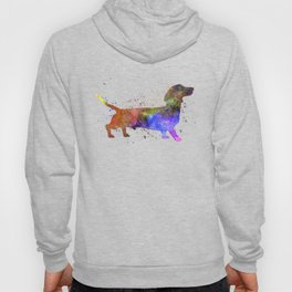 Short Haired Dachshund 01 in watercolor Hoody