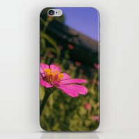 seoul iPhone & iPod Skins featuring Seoul Flower by Clayton Jones