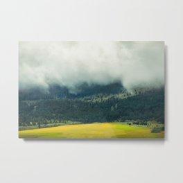 Foggy Morning Meadow Metal Print