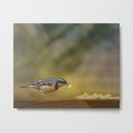 Thrush with Bread Metal Print