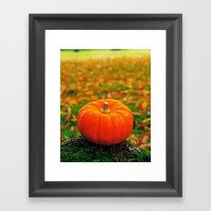 Perfect pumpkin Framed Art Print