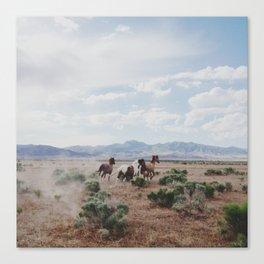 Running Horses Canvas Print
