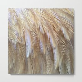 Light on a Feather Metal Print