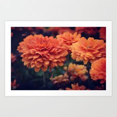 Sweet Orange Art Print