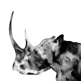 Art Print - Rhinoceros, black and white - Luba Ost