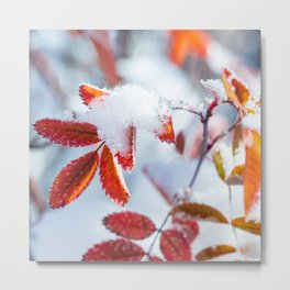 Snowy Fall Leaves // Frozen Fall Colors Metal Print