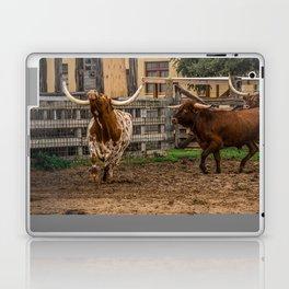 Frolicking Longhorns Laptop & iPad Skin