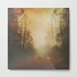 Meadow in Mist Metal Print