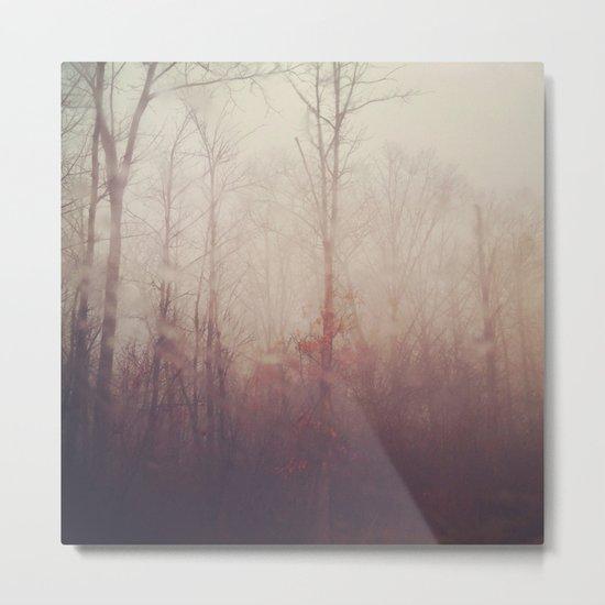 Winter Haze Metal Print