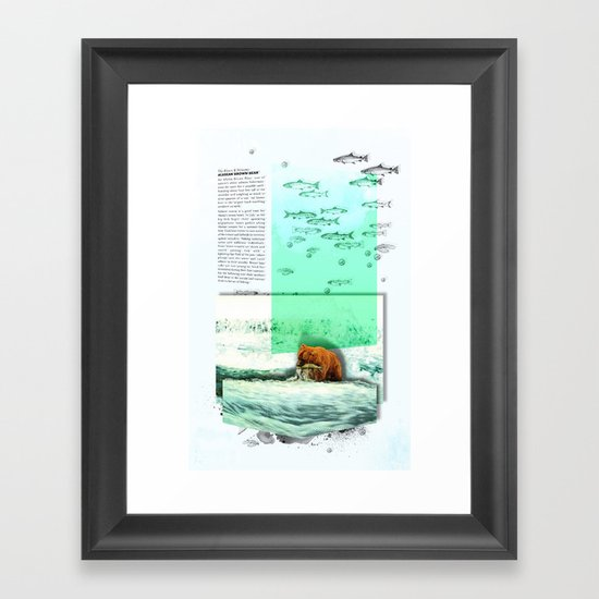 Alaskan Brown Bear Framed Art Print