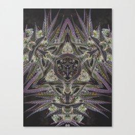 Purple Black Lime #2 Canvas Print