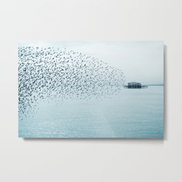 The Bird Show Metal Print