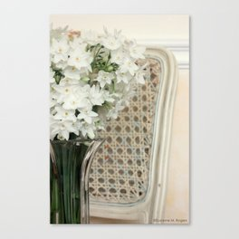 Winter Narcissus & Vintage French Chair Canvas Print