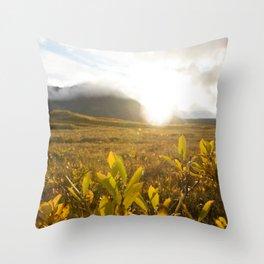 Brooks Range Sunset Throw Pillow