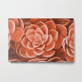 Red Succulenta Flower Metal Print