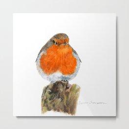 English Robin by Teresa Thompson Metal Print