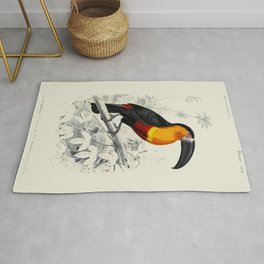 Vintage Toucan Rug