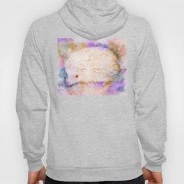 Sweet Champagne Hedgehog Watercolor Effect Hoody