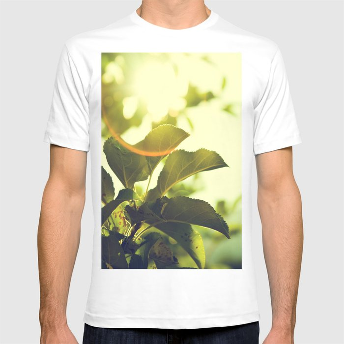 Morning Light Shining Through Branches Of Leaves Nature Photography T-shirt