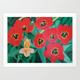 Tulips in bloom Art Print
