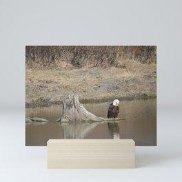 Self Reflection! Mini Art Print
