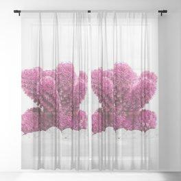 Modern Cactus VI Sheer Curtain
