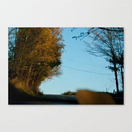 Orange Allergany Canvas Print