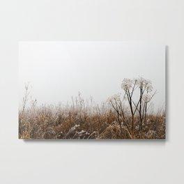 Winterly - VINTERLIK Metal Print