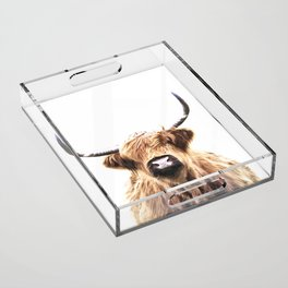 Highland Cow Portrait Acrylic Tray