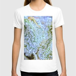 Blanket of Trichomes T-shirt