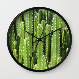 DETAIL VIEW OF THE CACTUS Wall Clock